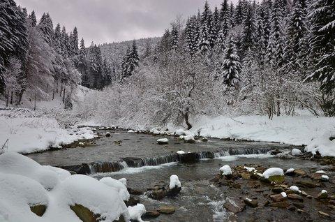FOTKA - Zimní romance