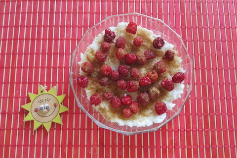 FOTKA - Ovocné svačinky:  Sladká rýže s malinami