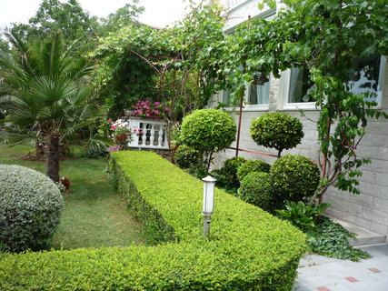 FOTKA - zahrada u vily Seka