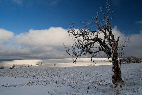FOTKA - u Moldavy
