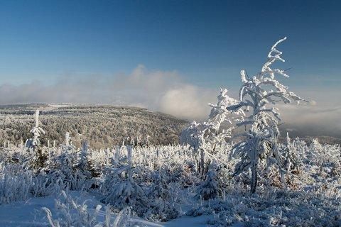 FOTKA - Zima na Loučné