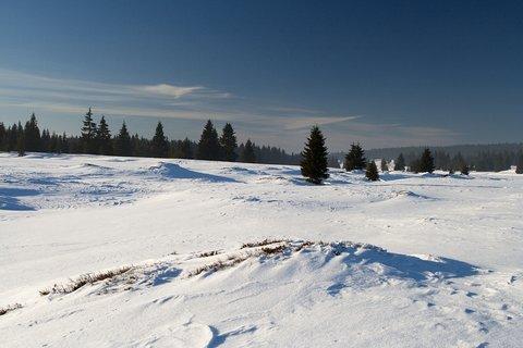 FOTKA - Zima u Božího Daru