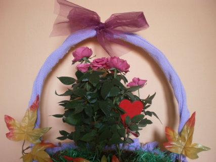 FOTKA - Růžička v košíčku