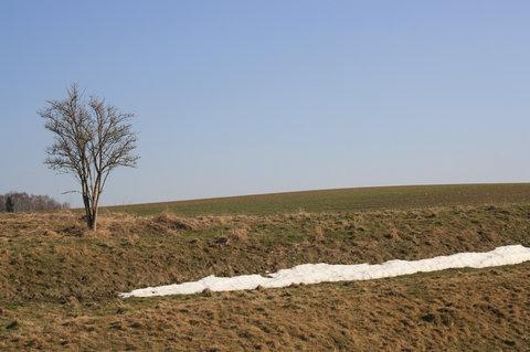 FOTKA - poslední sníh