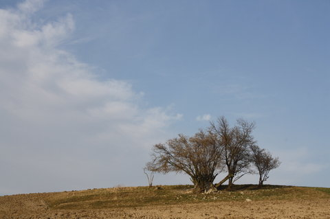 FOTKA - na kopci