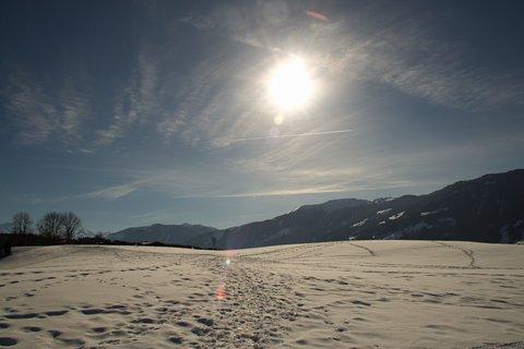 FOTKA - Znovu na Ritzensee - Cesta ve slunečním svitu