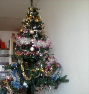 FOTKA - Vánoce 2013