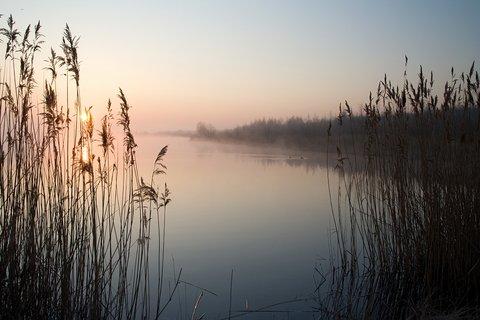 FOTKA - Ráno u jezera