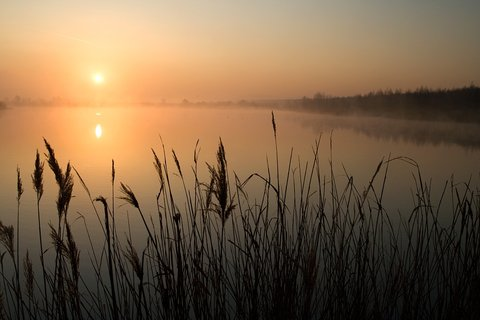 FOTKA - Sluníčko nad vodou