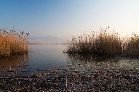 FOTKA - Na jezerním břehu