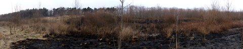 FOTKA - Nemáme kde lítat s Ritunkou,někdo zapálil místa kam chodíme na procházky.