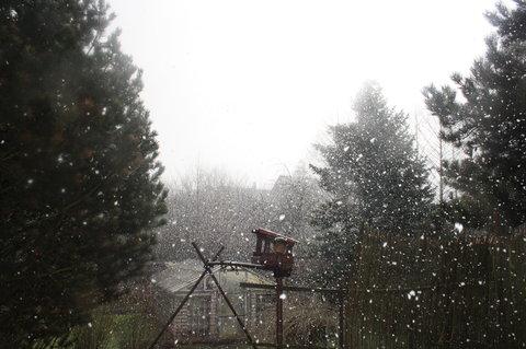 FOTKA - velikonoce na sněhu