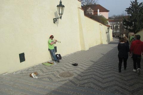 FOTKA - Staré  zámecké  schody - osamělý muzikant zpříjemňuje šlapání