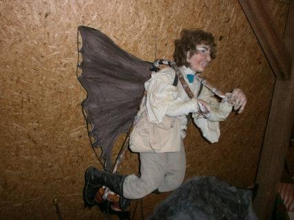 FOTKA - létající švec