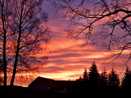 FOTKA - Jedno krásné ráno...