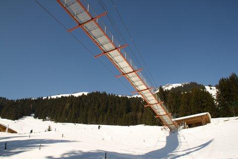 FOTKA - Baumzipfelweg v zimě - Pod mostem