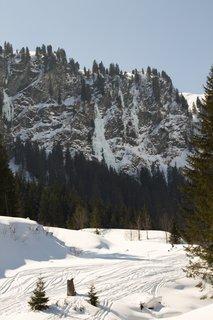FOTKA - Baumzipfelweg v zimě - Pohled ke konci údolí