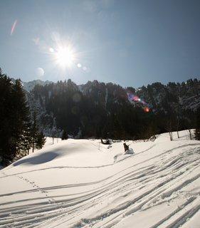 FOTKA - Baumzipfelweg v zimě - Proti slunci