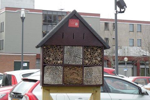 FOTKA - hotel pro hmyz