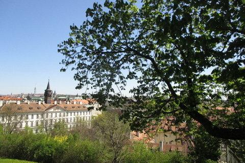 FOTKA - Ze Svatováclavská vinice   - pohled na Klárov