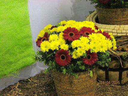 FOTKA - Žluto-červená kytice