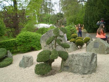 FOTKA - Kameny a stromy