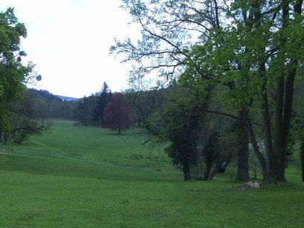 FOTKA - Zeleň u zámku