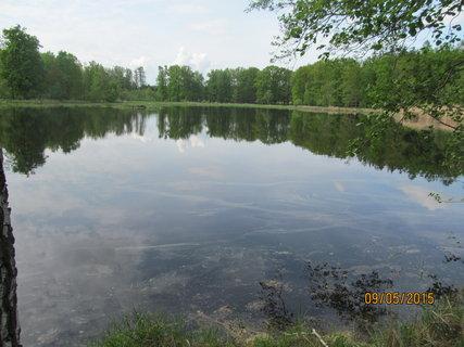 FOTKA - Nebeský rybník