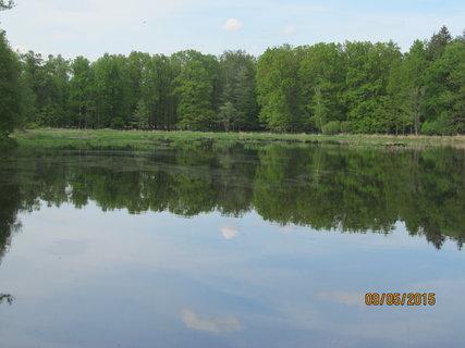 FOTKA - Zrcadlení na rybníku
