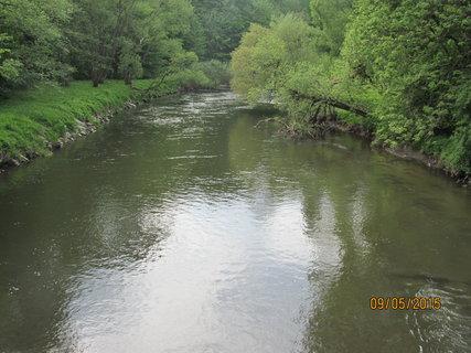 FOTKA - Řeka v zeleni