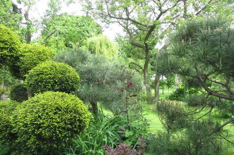 FOTKA - Z procházky - nádherná zahrada