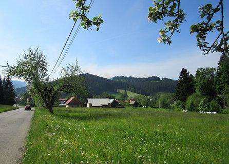 FOTKA - červen a nad V.Karlovicemi kvetou jabloně