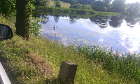 FOTKA - rybník u silnice