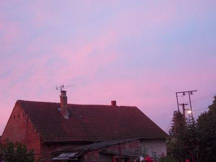 FOTKA - růžové dnešní ráno