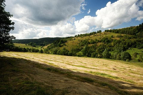 FOTKA - Údolí Moldavského potoka