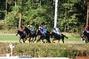 koně a oři:)