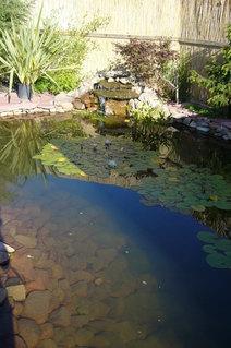 FOTKA - Zahradní koutek
