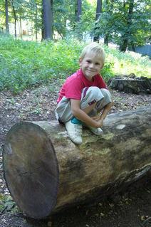 FOTKA - Daneček v lesoparku