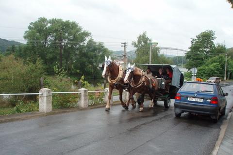 FOTKA - cestou na Karlštejn