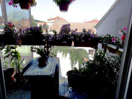 FOTKA - Posezení na balkoně