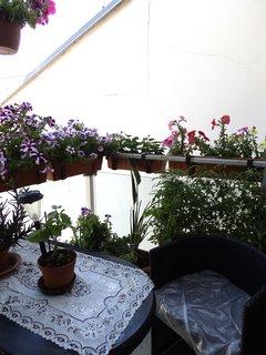 FOTKA - Oáza klidu nad střechami