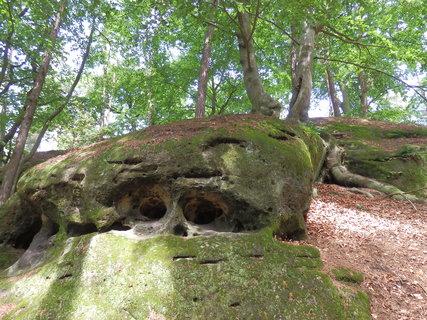 FOTKA - bububu (z toulek Kokořínskem)