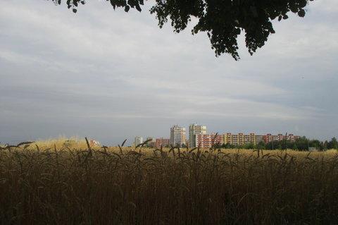FOTKA - Léto na sídlišti v Letňanech