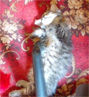 FOTKA - držím kolečko od židle a spím