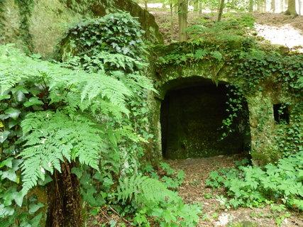 FOTKA - dříve skalní byty, dnes zelení dýchající romantika (Kokořínsko)