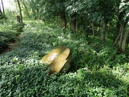 FOTKA - zaniklý židovský hřbitov Bosyně (Kokořínsko)