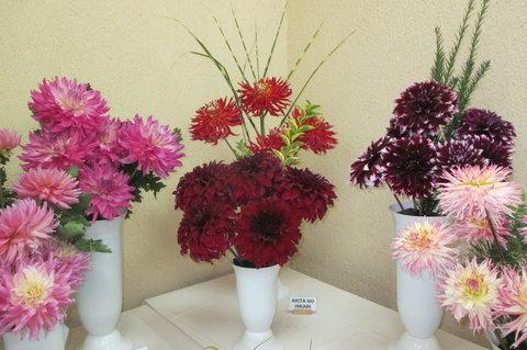 FOTKA - Jiřinky jsou  levným a krásným materiálem pro vazbu kytic.