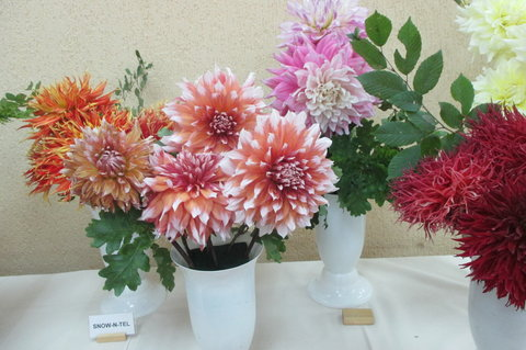 FOTKA - Jiřinky jsou také levným a krásným materiálem pro vazbu  věnců a jiných květinových dekorací.