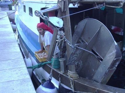 FOTKA - Rybář s úlovkem krabů