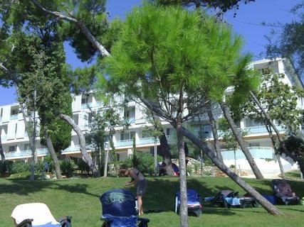 FOTKA - U hotelu se na zahradách také opaluje